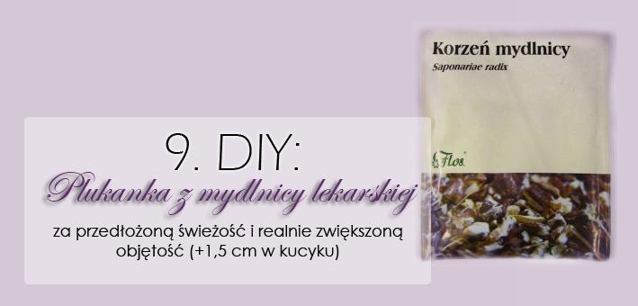 http://www.anwen.pl/2013/08/zioowa-pielegnacja-mydlnica-lekarska.html