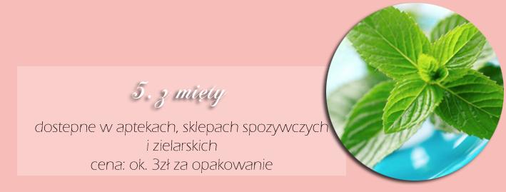 http://www.anwen.pl/2010/06/o-zioach-sow-kilka.html